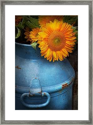 Flower - Sunflower - Little Blue Sunshine  Framed Print by Mike Savad