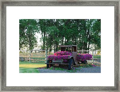Flower Truck Framed Print