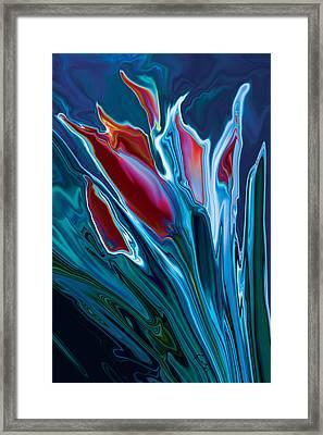 Flower Unknown 2 Framed Print