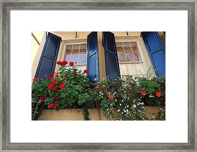 Flower Window In Charleston Sc Framed Print