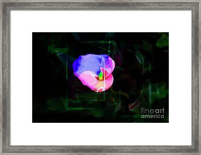 Framed Print featuring the photograph Flower Wower by Al Bourassa