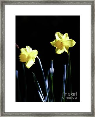 Flower_02 Framed Print