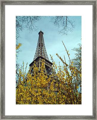 Flowered Eiffel Tower Framed Print by Charles  Ridgway