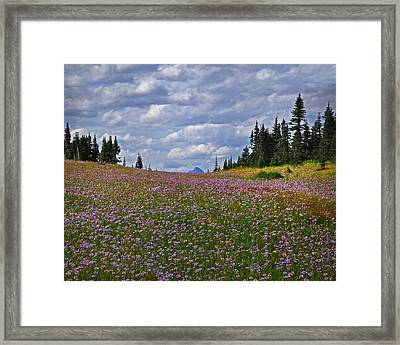 Flowered Rise Framed Print