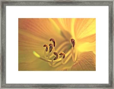Flowerheart Framed Print