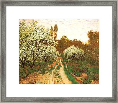 Flowering Apple Trees Framed Print by Claude Monet
