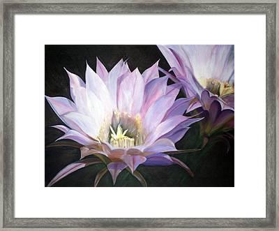 Flowering Cactus Framed Print by Fiona Jack