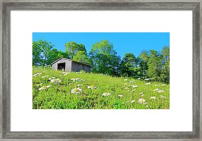 Flowering Hillside Meadow - View 2 Framed Print