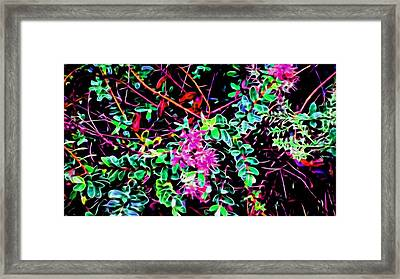Flowering In Abstract 5 Framed Print