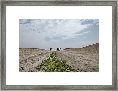 Flowering In The Desert Framed Print
