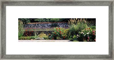 Flowering Plants In A Garden, Biltmore Framed Print by Panoramic Images
