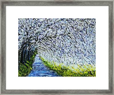 Flowering Tree Lane Framed Print