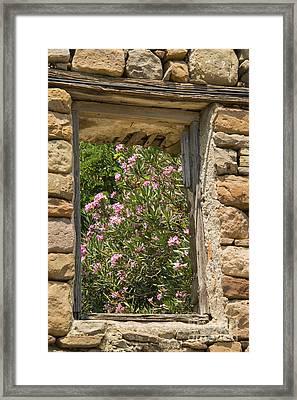Flowering Window View Framed Print