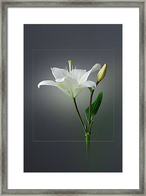 Flower..one Framed Print by Deepak Pawar