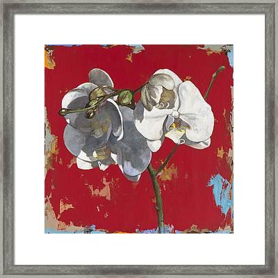 Flowers #6 Framed Print by David Palmer