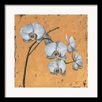 Orchid Flowers Framed Prints