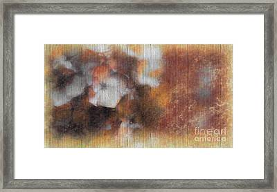 Flowers Abstract 1 Framed Print