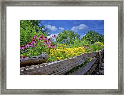 Flowers Along A Wooden Fence Framed Print