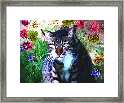 Flowers And Cat Framed Print by Dr Loifer Vladimir