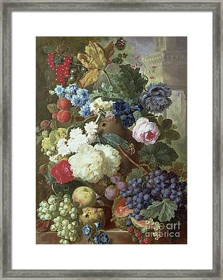 Flowers And Fruit Framed Print