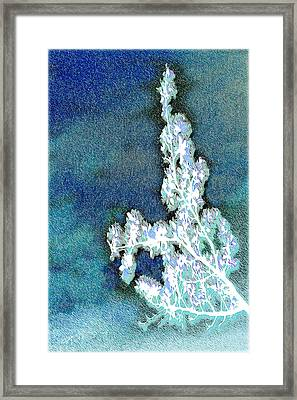 Flowers And Ice Framed Print