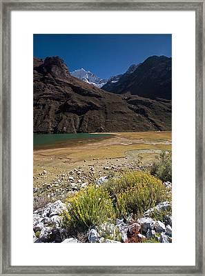 Flowers And Mountain Lake In Santa Cruz Valley Framed Print by Aivar Mikko