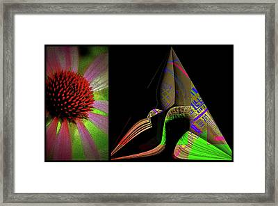 Framed Print featuring the digital art Flowers And Shapes by Irma BACKELANT GALLERIES