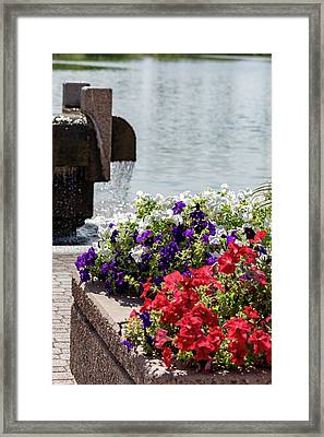 Flowers And Water Framed Print