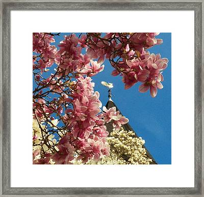Flowers At The Steeple Framed Print