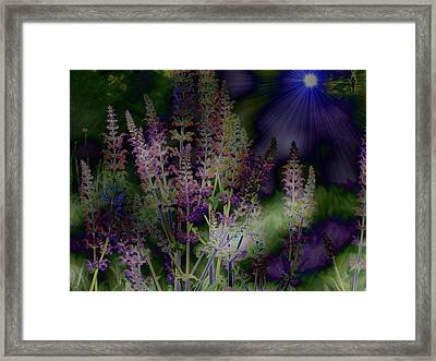 Flowers By Moonlight Framed Print