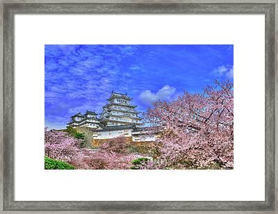 Flowers Era Framed Print
