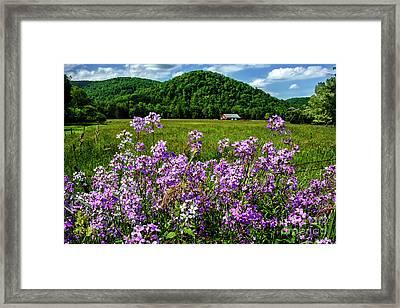 Flowers Field And Barn Framed Print by Thomas R Fletcher