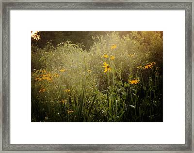 Flowers For My Love Framed Print by Sarah Boyd
