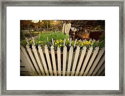 Flowers For Sale Framed Print by Lara Morrison