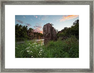 Flowers For The King Framed Print by Aaron J Groen