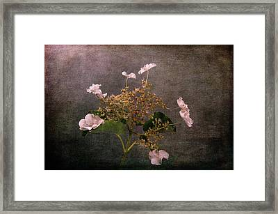 Framed Print featuring the photograph Flowers For The Mind by Randi Grace Nilsberg