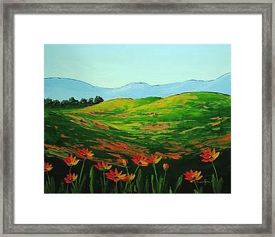 Flowers In A Meadow Framed Print by Nolan Clark