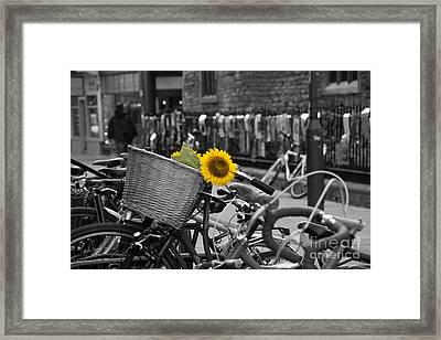 Flowers In Bike Framed Print by David Warrington