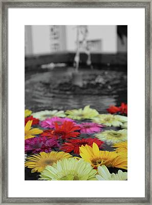 Flowers In Fountain Framed Print