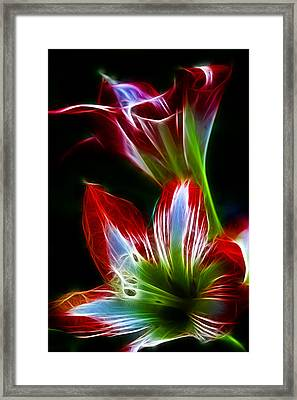 Flowers In Green And Red Framed Print