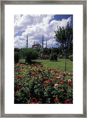Flowers In Sultanahmet Square Framed Print by Richard Nowitz