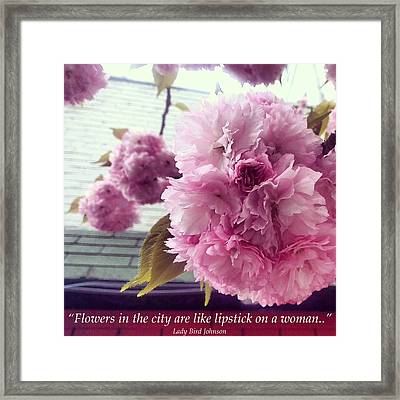 Flowers In The City Framed Print by Katelyn Rose