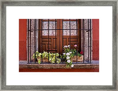 Flowers In Window Box San Miguel De Allende Framed Print by Carol Leigh