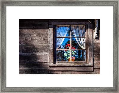 Flowers In Window Framed Print by Jon Manjeot