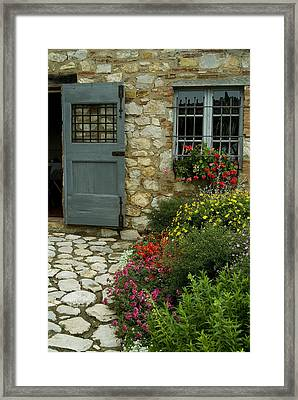 Flowers Line The Path And Adorn Framed Print by Todd Gipstein