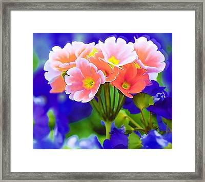 Flowers Framed Print by Mitchell Gibson