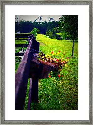 Flowers On A Fence Framed Print by Jill Tennison