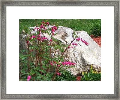 Framed Print featuring the digital art Flowers On The Rocks by Barbara S Nickerson
