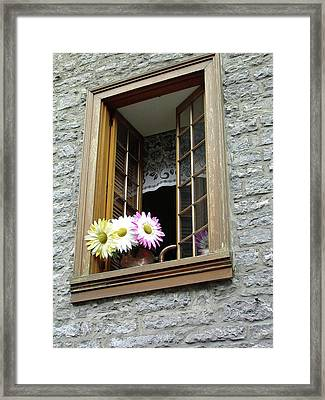 Framed Print featuring the photograph Flowers On The Sill by John Schneider