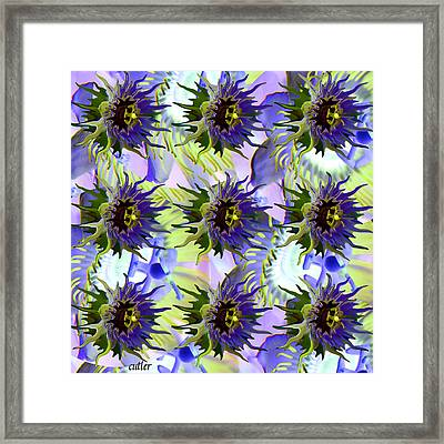 Flowers On The Wall Framed Print by Betsy Knapp
